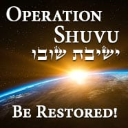 icon_ahavatammi_donate_shuvu